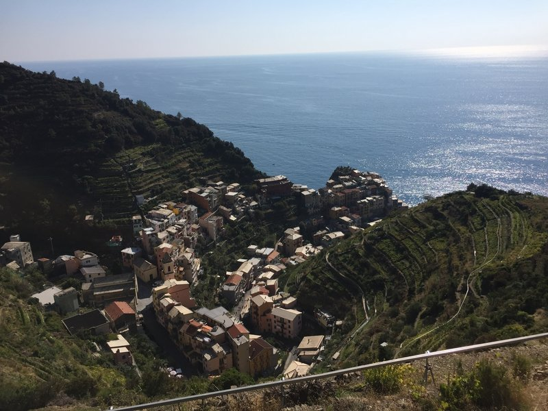 The view of Manarola from the panoramic trail beneath terraced vineyards.