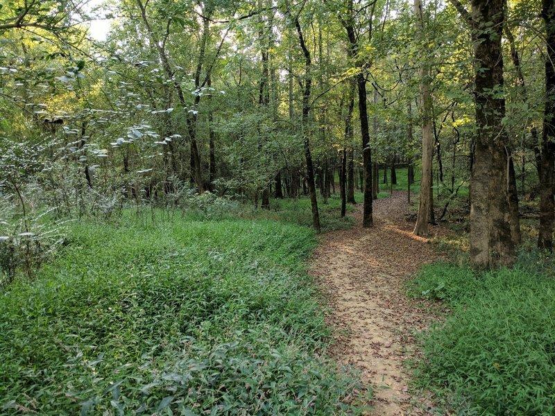 Pharr Farm Trail.