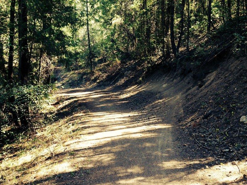 Winthrop Trail