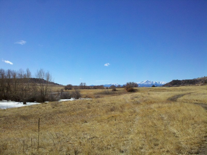 Looking Southwest across Meadow towards Pikes Peak