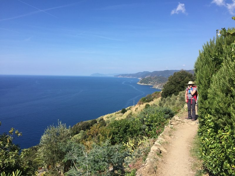 Typical section of trail looking back to Levanto.
