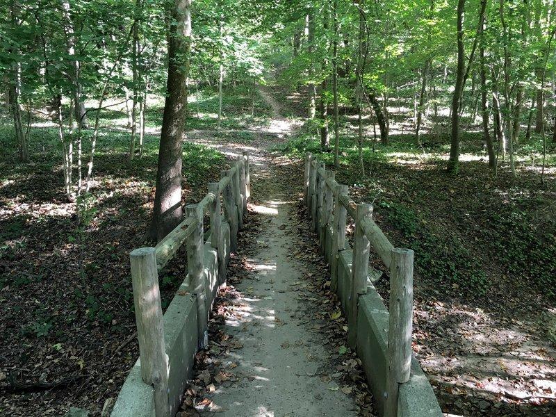 The beautiful Cherokee Park!
