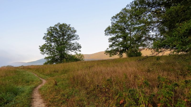 An early autumn crossing of the meadows of Schunnemunk State Park