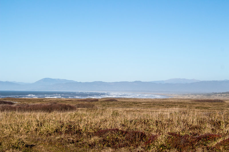 Dunes and grassy meadows of Tolowa Dunes State Park