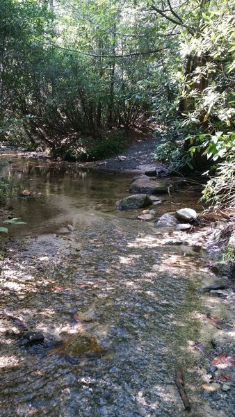 The crossing at Briery Fork Creek.