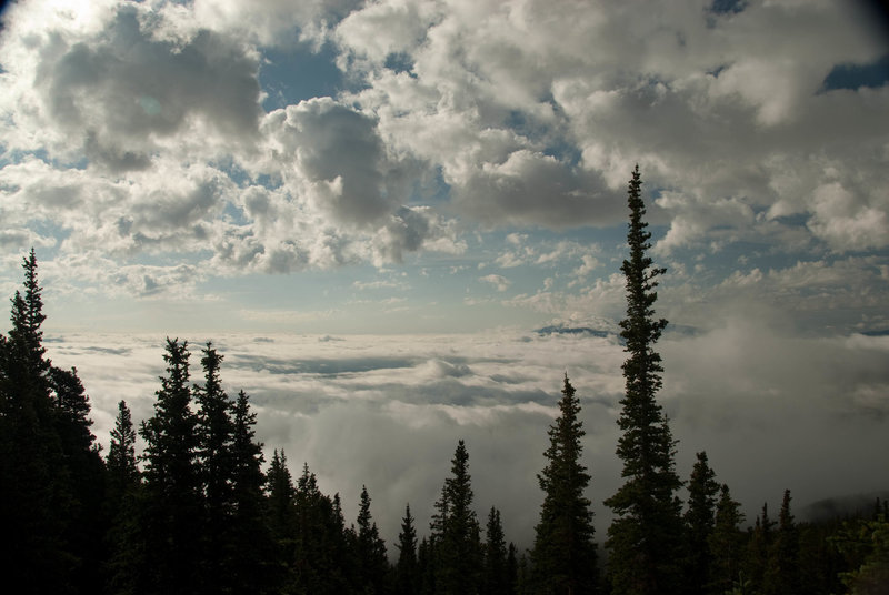 Emerging from treeline to a horizon of clouds.