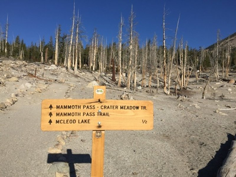 Mammoth Pass Trailhead sign