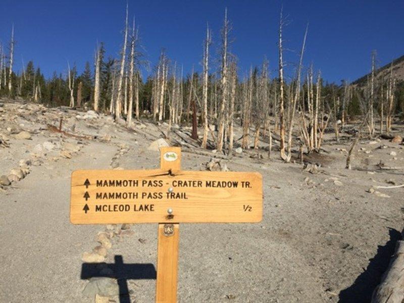 Mammoth Pass Trailhead sign