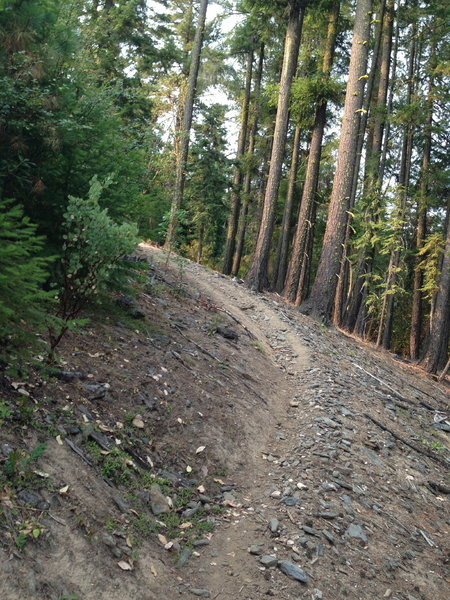 Steep section on Summit Lake Trail.