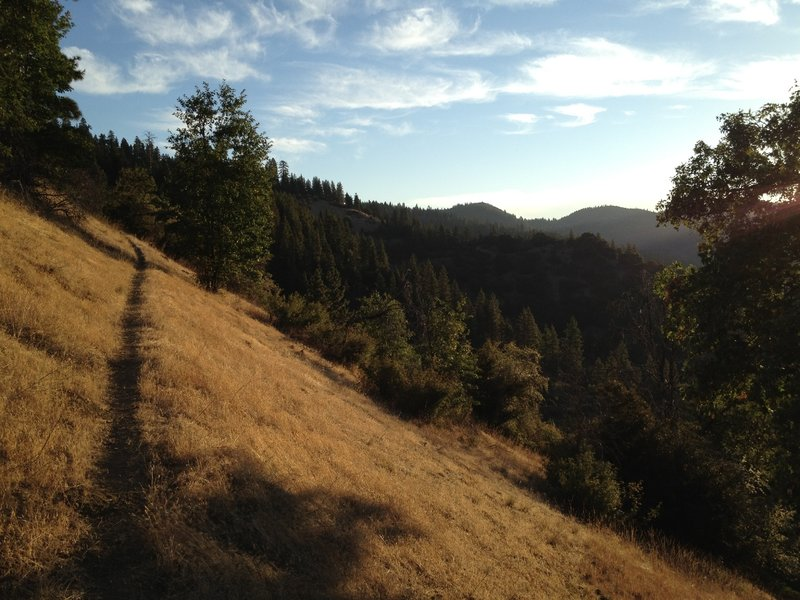 Little Greyback Trail