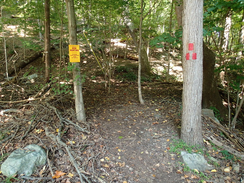 Start of trail from Lakeshore Drive in Montville