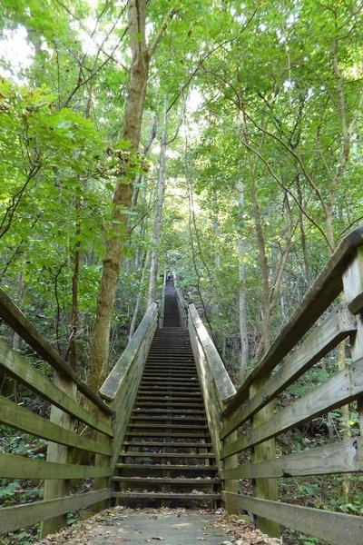 821 steps from the Kaymoor Bottom.