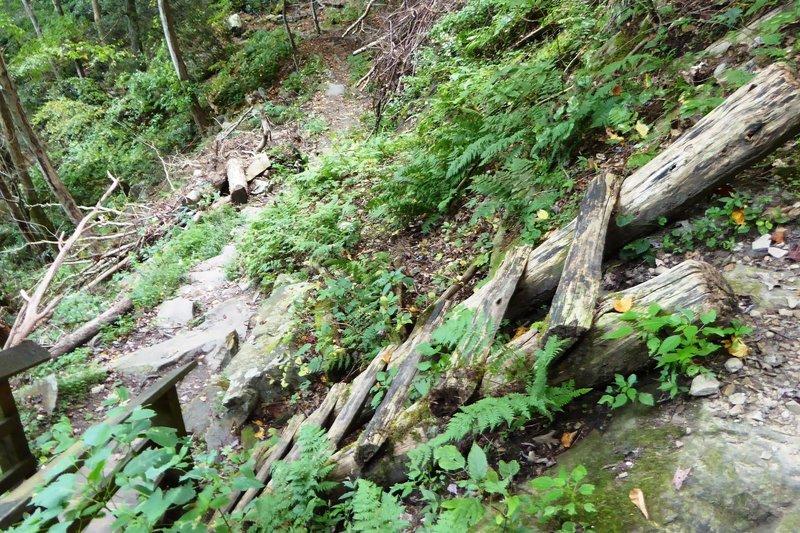 The Kaymoor Miners Trail