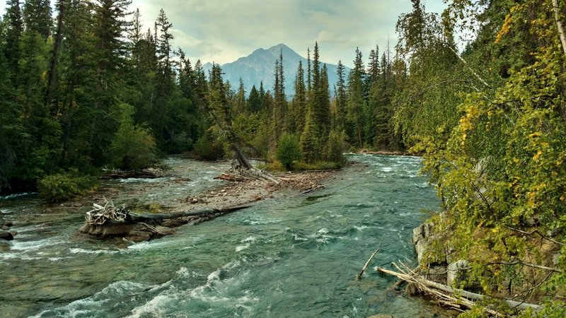 Maligne River between the 5th and 6th bridges of Maligne Canyon Trail.