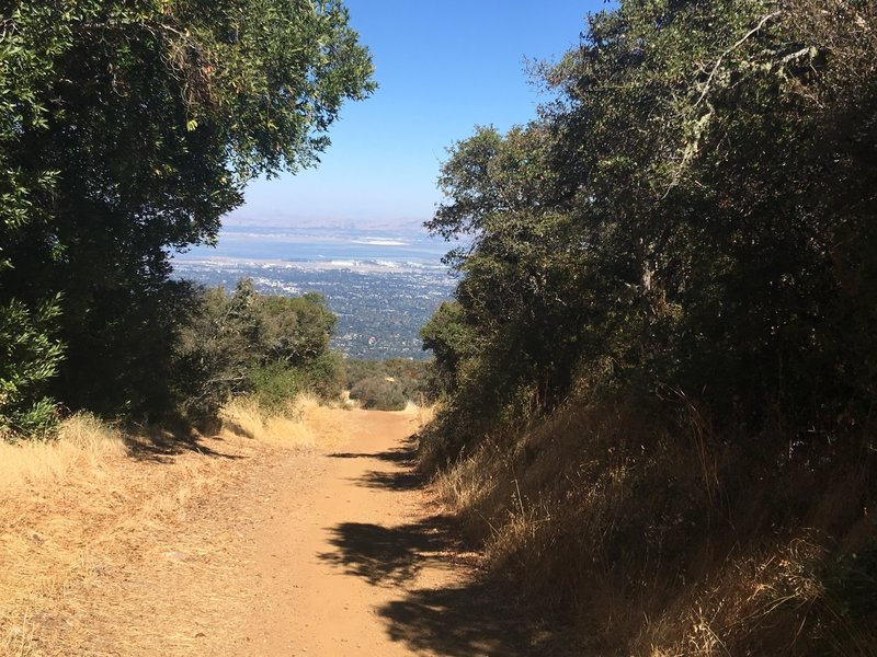 View of the South Bay from the Black Mountain Trail