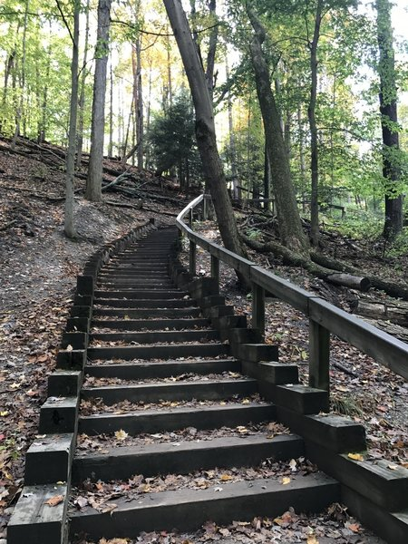 Stairs back up to Fort Hill