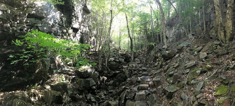 Typical section of the Gorge Trail