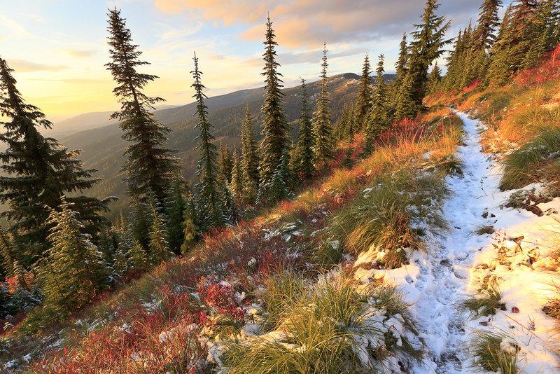 Grandmother Mountain Trail