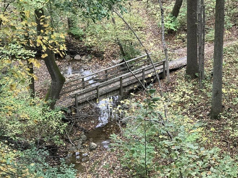 Bridge over the stream on the Schoen Trail