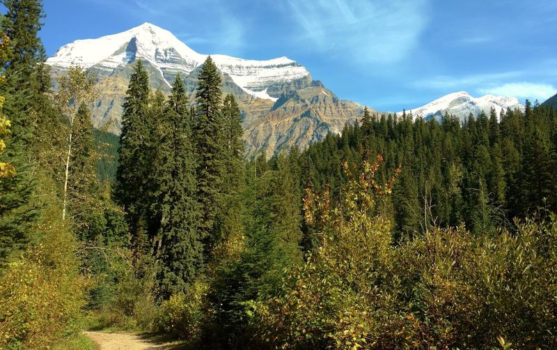 Mt. Robson in the distance, near the start of the Berg Lake Trail