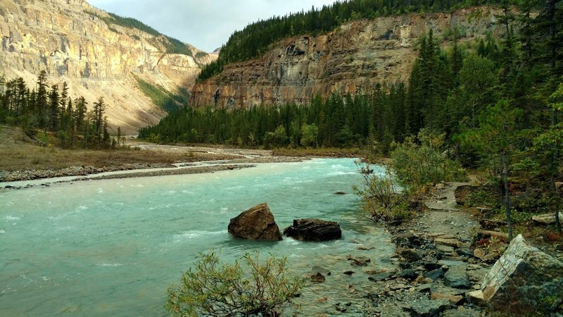 Robson River at the Whitehorn trail camp on the Berg Lake Trail