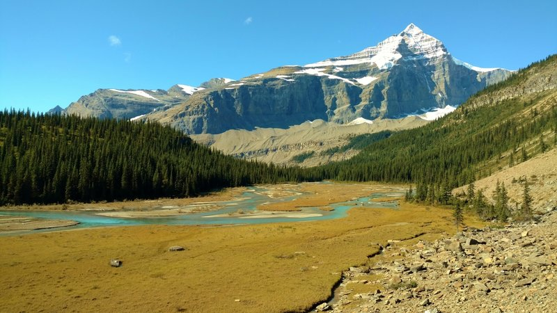 The turquoise Robson River meanders across the Berg Lake outlet flats, below Whitehorm Mountain