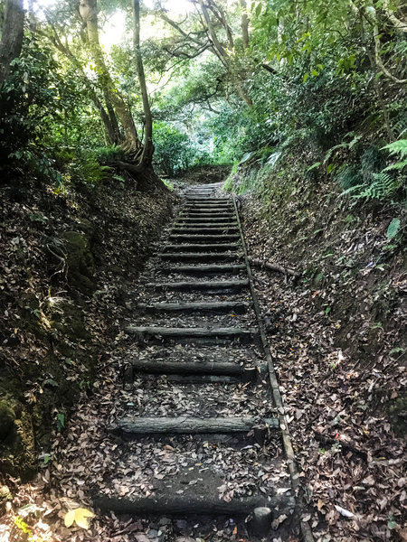 Some of the steps that are prevalent on Japanese hiking trails.