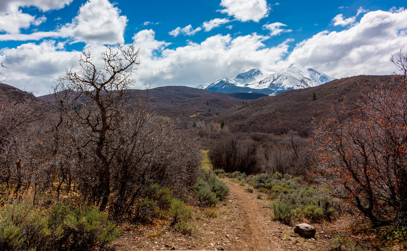 Enjoy awesome views from Monte Carlo on the Prince Creek Quickie loop.