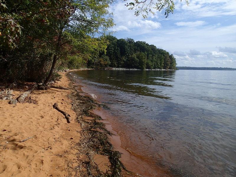 Beach along the Elk River