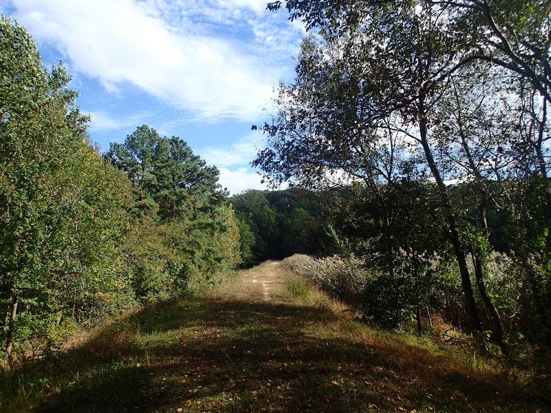 Trail along levee.