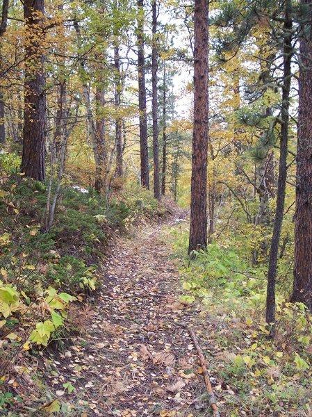 Upper Ogden Trail.