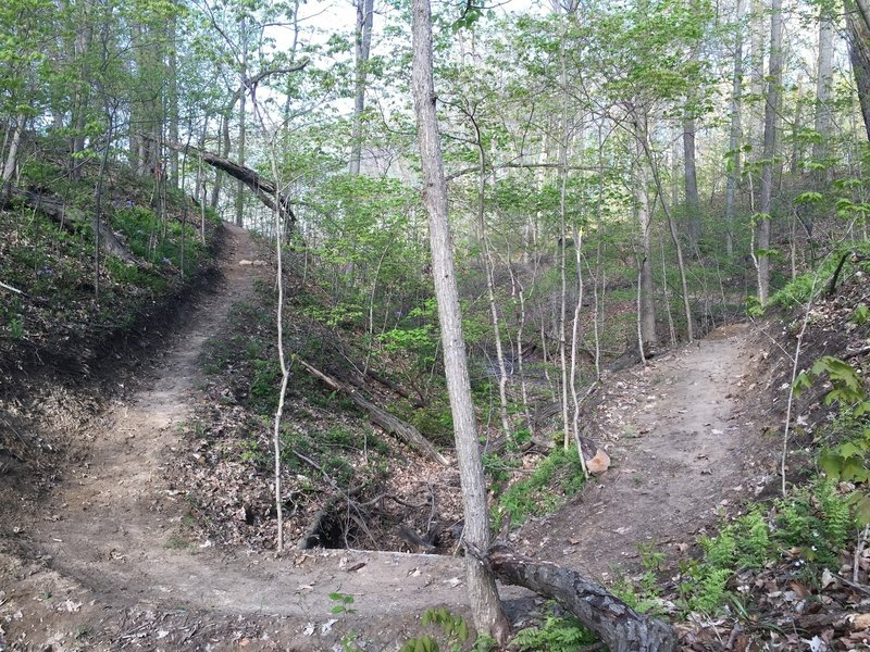 Crossing the second ravine on Trail C.