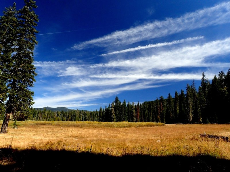 Hamaker Meadows along the Upper Rogue River Trail.