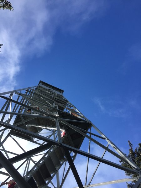 Looking up at the Elmore Fire Tower.