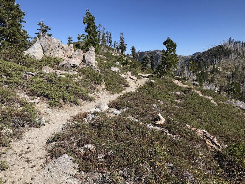 Haypress Trail
