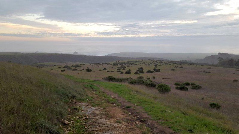 Ocean view from the Baldwin Loop Trail.