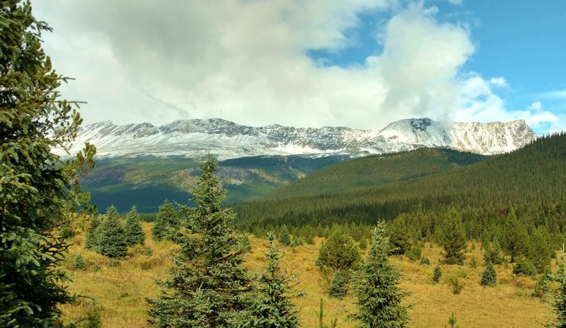 Snowy Calumet Ridge is in the distance, as the Moose River Route heads north across meadows dotted with firs.