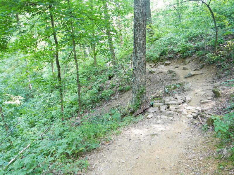 Walnut Trail.