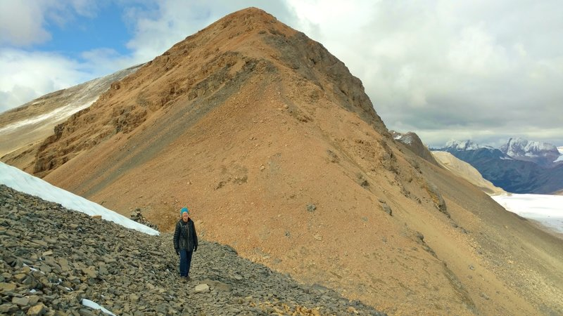 Made it! Titkana Peak rises above Snowbird Pass on the Continental Divide, with the Reef Icefield to the right (east).
