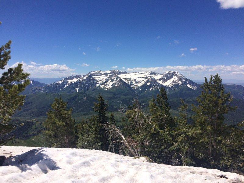 Timpanogos Massif from Mill Canyon Peak.