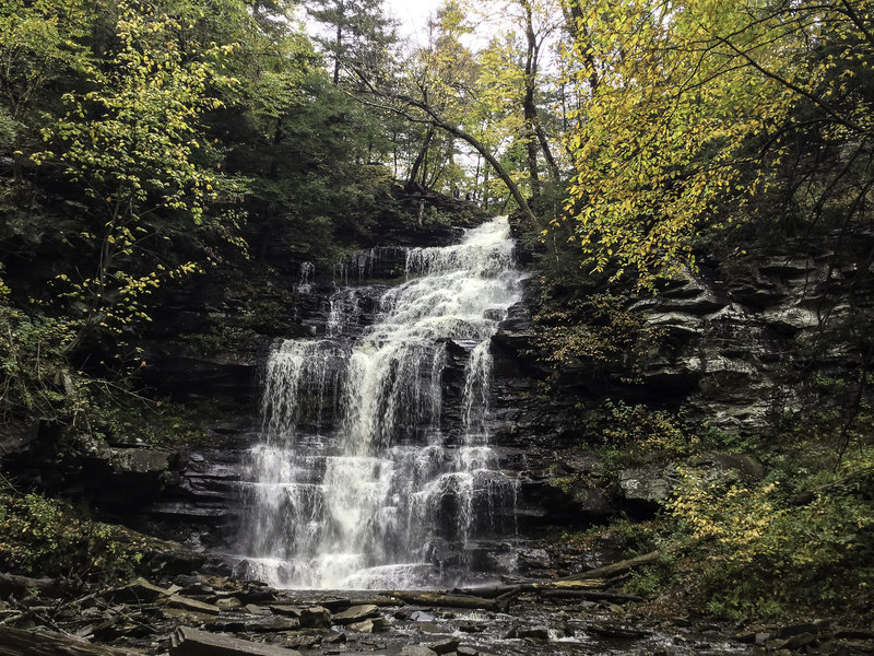 Ganoga Falls, a 94 ft. cascade.