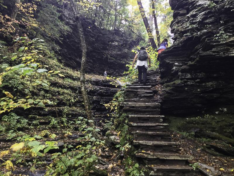 Hiking steps