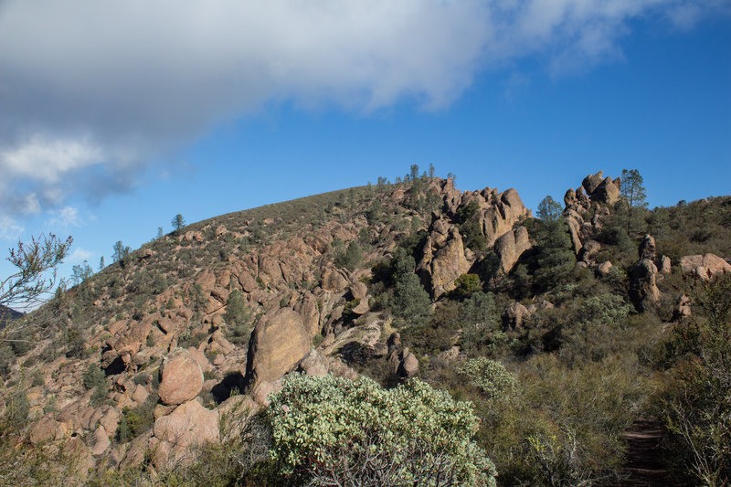 Volcanic boulders next to Chalone Peak Trail