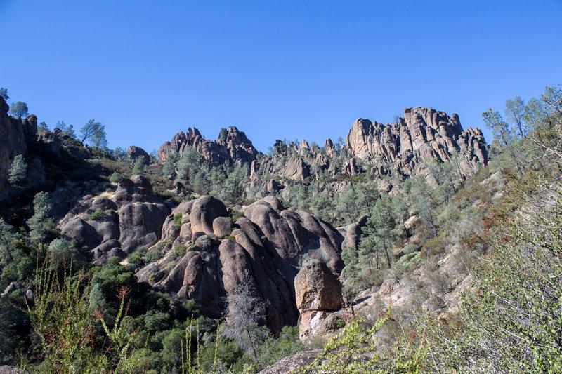 Pinnacles surrounding Condor Gulch Overlook.