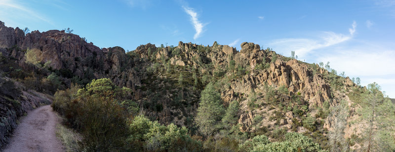 Pinnacles from High Peaks Trail
