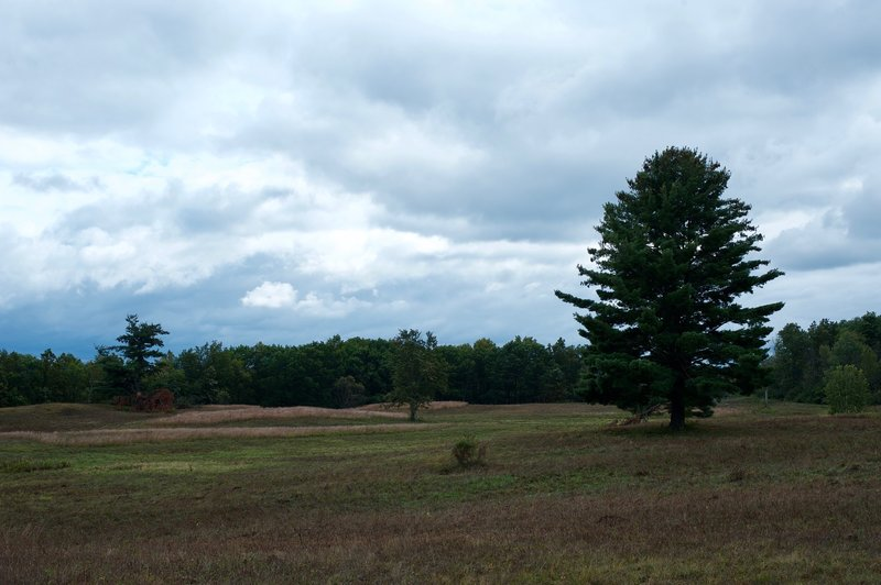 Heading through the fields of the Saratoga National Historic Park.