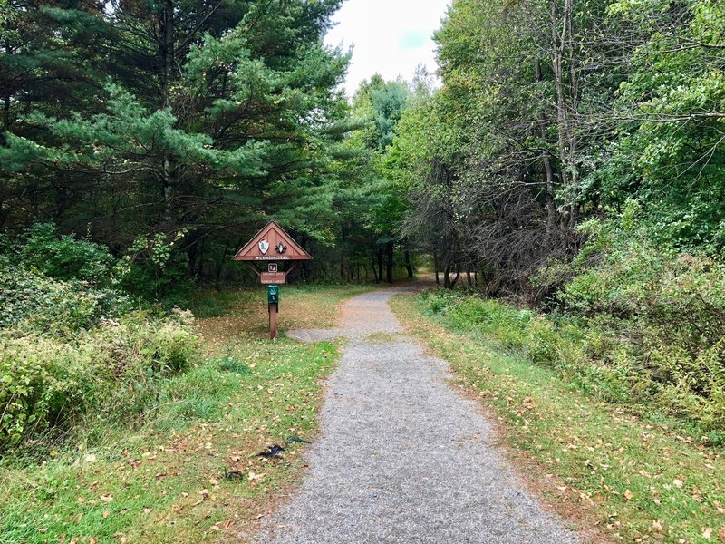 The trail as it departs from the visitor center.