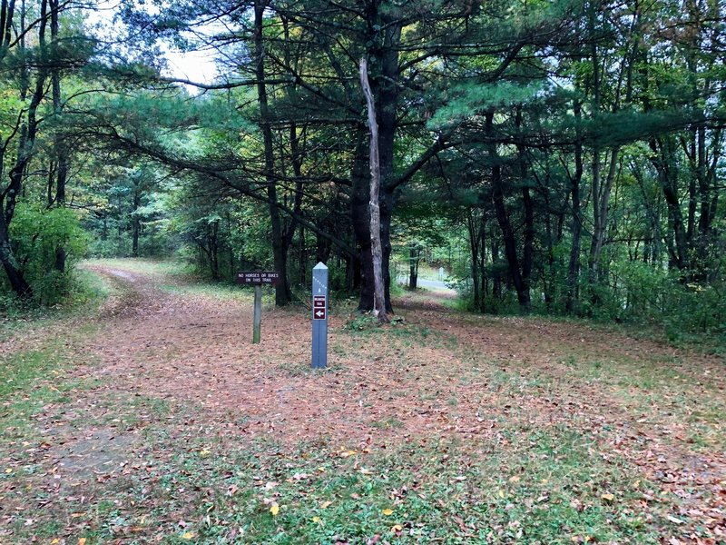The horse trail breaks off to the right while the Wilkinson Trail goes off to the left.