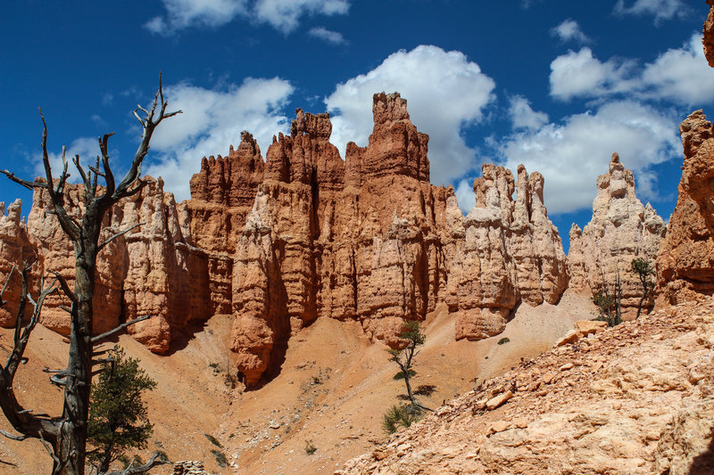 Hoodoos on Peekaboo Loop Trail