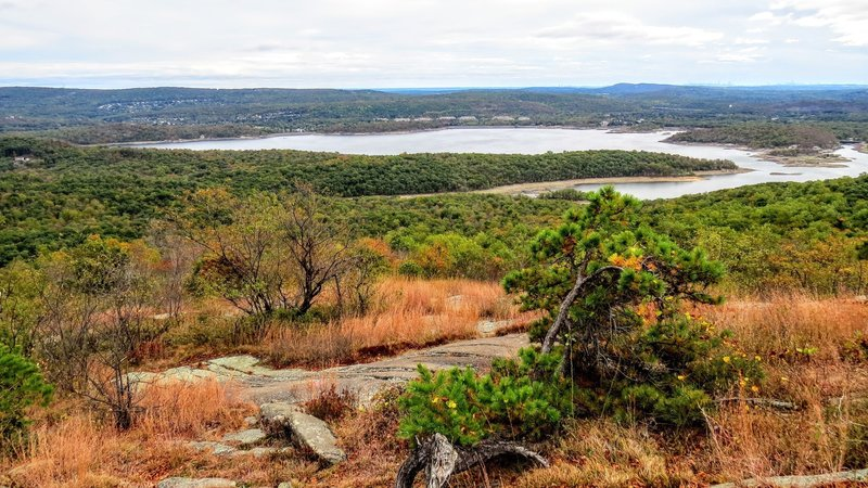 A relatively dry Wanaque Reservoir commands the view from Wyanokie High Point in Norvin Green State Forest
